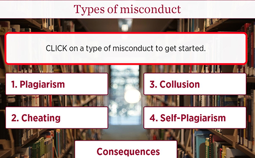 Visual example from the Academic Integrity Module