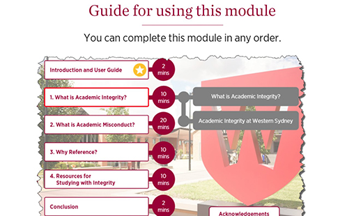 Video screen example from the Academic Integrity Module